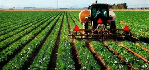 agro_agricultura01